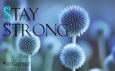 #stay #strong #be #stelladenuit #facebook #spiritual #advice #blessings