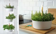 Indoor Garden Ideas   Hang Your Plants From The Ceiling U0026 Walls // These  Planters Hang From The Ceiling And From Each Other Making It Easy To Take  Down A ...