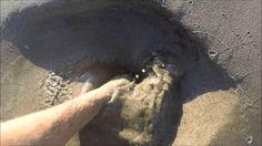 Technique to find sand worms , technique pour trouver des vers de sable ...