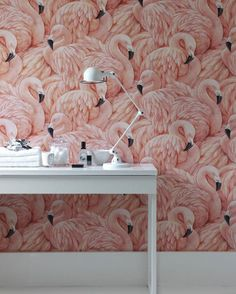 Flamingo Wallpaper - Flamboyant & Eye Catching