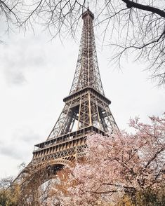 Paris in April is one of the best places in the world to see cherry blossoms. Our guide includes the cherry blossom trees outside the Eiffel Tower and Notre Dame, as well as other hidden spots in Paris. We hope this with handy guide you'll know exactly where to look for them!