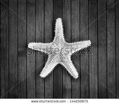 Monochrome image of spiked sea-star on a wooden background. #stockphoto #shutterstock #blackandwhite  #monochrome #seastar #marine b&w