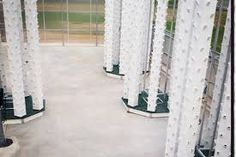 Resultado de imagem para aeroponic growing system