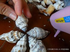 Charcoal and Crayons: Super Simple Seashell Stars