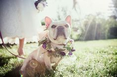 """This one who's reflecting on the gravity of saying """"I do"""": 