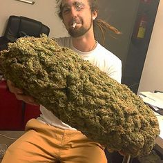 for you. but you have to smoke it in one session.... lol can you imagine!!! I Snoop Doggie Dogg dare you!!!! muah-hahahahaha!
