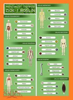 Kuchenne Ciekawostki – Kulinarne S.O.S. Wellness Tips, Health And Wellness, Health Fitness, Cold Remedies, Health Challenge, Green Life, Natural Medicine, Nutrition Tips, Better Life