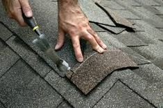 Is your roof mossy, leafy or leaking? Our roof cleaning service can help. Call Northwest Roof Maintenance today for a roof cleaning: Roofing Companies, Roofing Services, Roofing Contractors, Hampshire, Types Of Roof Shingles, Roofing Shingles, Diy Roofing, Modern Roofing, Steel Roofing