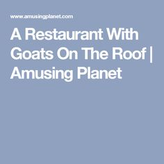 Al Johnson's Swedish Restaurant and Butik is a family owned, casual dining restaurant in the village of Sister Bay in Door County, Wisconsin. Sister Bay, Turkey Gravy, Door County, Goats, Restaurant, Diner Restaurant, Restaurants, Dining, Goat