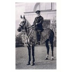 Pohlednice Tomáš Garrigue Masaryk 2, kód 1026 Horses, School, Animals, History, Animais, Animales, Animaux, Animal, Horse