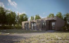http://www.3dstudija.lt/wp-content/gallery/exterior/scandinavian-house-2.jpg