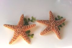 Starfish Boutonniere  Beach Wedding by WeddingTrousseau on Etsy