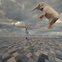 "Photo ""Balanced"" by Caras Ionut (@Gail Regan Truax://carasdesign.ro/fine-art) #500px."