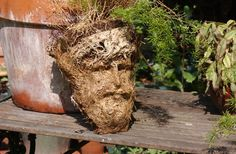 When potted plant was being repotted, the image of JESUS (I can testify personally this is what JESUS looks like)