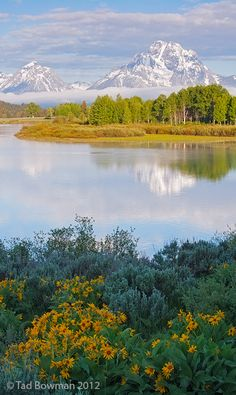 Mount Moran at Oxbow Bend, Grand Teton National Park, Wyoming, USA. Photo by Tad Bowman. Grand Teton National Park, National Parks, Beautiful World, Beautiful Places, Landscape Photography, Nature Photography, Nature Sauvage, Seen, Parcs
