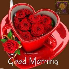 photo good morning roses good morning images good morning my love good morning