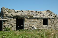 North Ronaldsay May12 Cool Sheds, Rustic, Plants, Country Primitive, Retro, Farmhouse Style, Plant, Primitives, Country