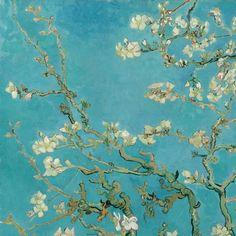 Amandelbloesem - Van Gogh Museum
