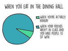 And your meal schedule, tbh: