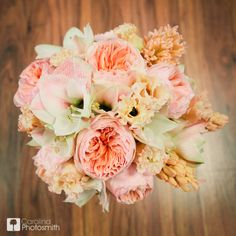 Peach continues to be one of the hottest wedding colors. Whether you are going beachy coral or vintage shabby chic, this scrumptious peach bouquet is perfect!  Wedding Bouquet of Apple Blossom Amaryllis, Juliet Garden Roses (David Austin Roses), Peach Hyacinth and Ruffled Peach Lisianthus.  Photo by Carolina Photosmith