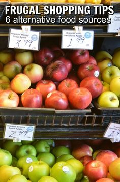 6 Alternative Food Sources When Food Costs Rise