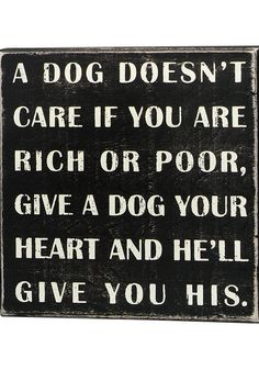 'A Dog Doesn't Care' Wall Sign