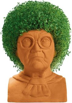 Holiday Gifts For 90s Tv Pop Culture Chia Pet Golden Girls Gifts Golden Girls