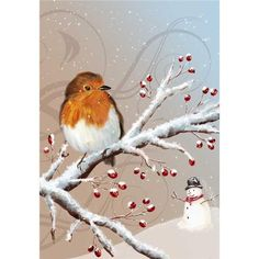 Image Library Designs Original illustrations occasions Christmas greetings cards Christmas Greeting Cards, Christmas Greetings, Robin Bird, Library Design, Illustrations, Xmas, Birds, The Originals, Animals