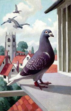 Illustration : Edward Osmond, from Pets (Ladybird, 1957).