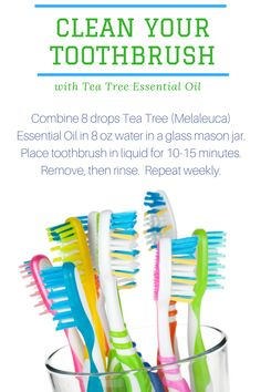 How to Clean your Toothbrush with Tea Tree Essential Oil