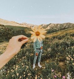 ideas flowers photography yellow spring – Everything for Nature Photos Bff, Cool Photos, Artsy Photos, View Photos, Travel Photos, Creative Photography, Portrait Photography, Photography Flowers, Yellow Photography