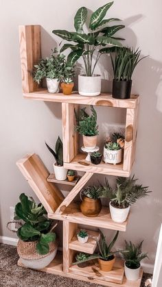 House Plants Decor, Plant Decor, Fake Plants Decor, Diy Bedroom Decor, Diy Home Decor, Plant Shelves, Aesthetic Room Decor, Decoration Design, Room Inspiration