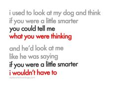 Funny dog quote    http://www.aplacetolovedogs.com/wp-content/uploads/389891072.jpg