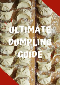 One of the most popular Cantonese dim sum dishes, shrimp & pork shumai is delicate, tasty and very easy to make in your own kitchen. Dumpling Sauce, Prawn Dumplings, Beef Dumplings, Frozen Dumplings, How To Make Dumplings, Dumpling Wrappers, Homemade Dumplings, Chinese Dumplings, Dumpling Filling Recipe Pork