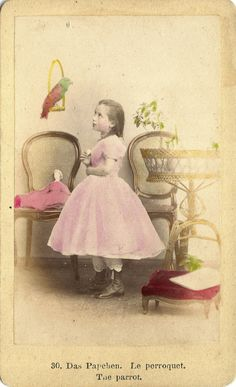 French CDV:  Girl in pink with doll and parrot.  Saved from Ebay.