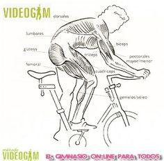 Sabes que trabajas con una clase de #cicloindoor en #VIDEOGIM o en tu gimnasio habitiual?