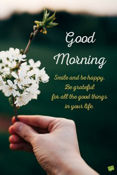 Whatsapp Images: Good Morning Pictures 2018 In Hindi Punjabi English Morning Wishes Quotes, Morning Quotes Images, Good Morning Images Hd, Good Morning Picture, Good Morning Flowers, Morning Pictures, Morning Sayings, Morning Pics, Night Quotes