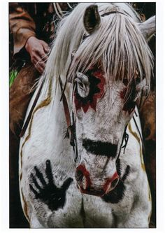 Native American war horse. Like our Trail of Painted Ponies! http://store.nationalcowboymuseum.org/products/souvenirs-and-collectibles/trail-of-painted-ponies/