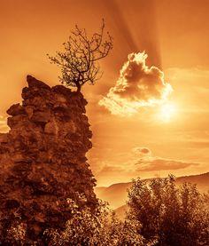 scene on the ruins of ancient castle of Turna, Slovakia # slovakia ruins bushes lancscape Turna Turniansky hrad