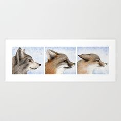 (Eastern Wolf, Grey Fox, & Swift Fox) The 3 animals are arranged in the order of least endangered to most endangered (left to right). I tried to symbolize that with their ear gestures.