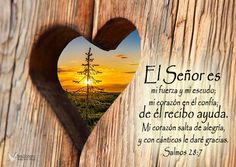 Latin Quotes, Christian Wallpaper, Bible Verses, Hollywood, Inspirational, Books, Truths, Amor, Happy