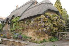 Thatched roof cottage in Ebrington!