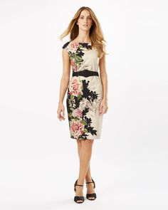 Arum Floral Placement Dress Phase Eight 0875b5203