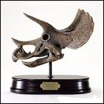 Triceratops Dinosaur Skull Model - This handsome dinosaur skull model is highly detailed from polyresin and is mounted on a solid wood base. $69.00 in stock and ready to ship today! Shop www.DnosaurToysSuperstore.com