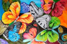 Hand Painted Butterfly Collage