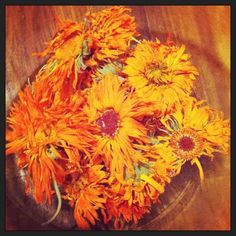 Calendula is such an amazing herb for the skin and for kids. It is super gentle, anti-inflammatory, soothing, tissue repairing and anti-fungal. Infused into a base oil, like olive oil, you can dr...