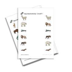 KiddyBlocks | Spoj stejné obrázky 1 - zvířátka v zoo Zoo, Free Printables, Preschool, Playing Cards, Free Printable, Kid Garden, Playing Card Games, Kindergarten, Game Cards