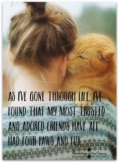 As I've gone through life, I've found that my most trusted and adored friends have all had four paws and fur #friends #animals #companion #friendship #cats #paws #fur #love #life