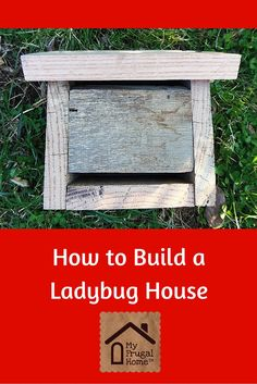 How to Build a Ladybug House -- they're great for aphid control