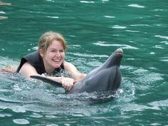 Dolphin Cove perfect family activity in Ocho Rios Jamaica